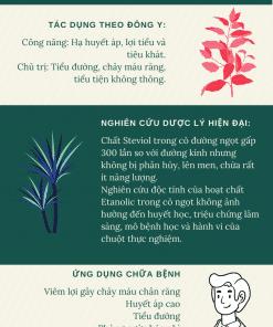 infographics cỏ ngọt