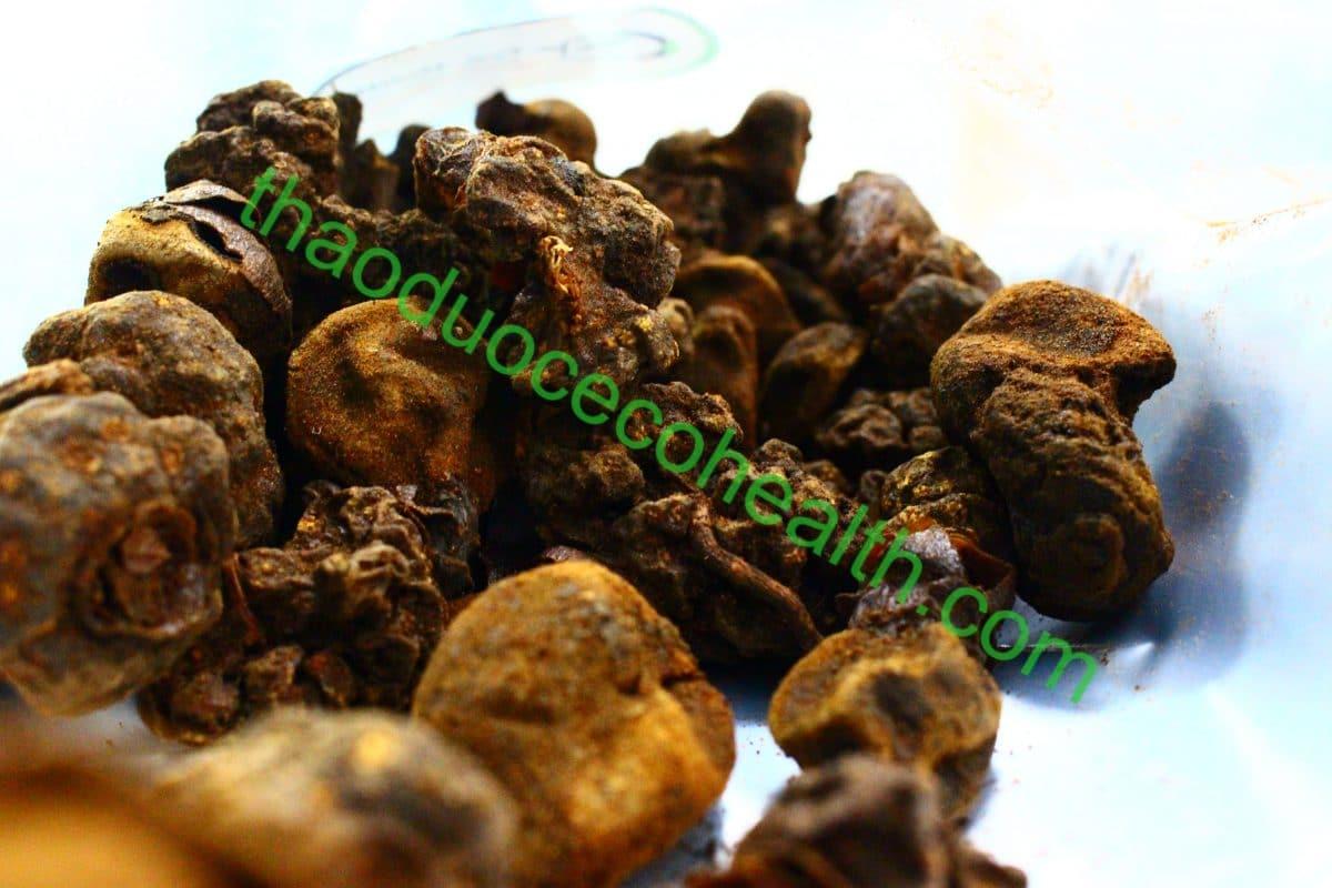 Nấm ngọc cẩu 1kg 14