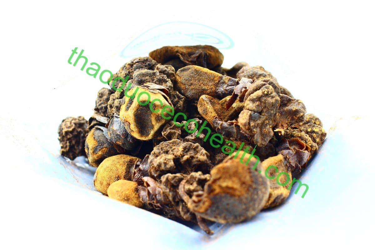 Nấm ngọc cẩu 1kg 15