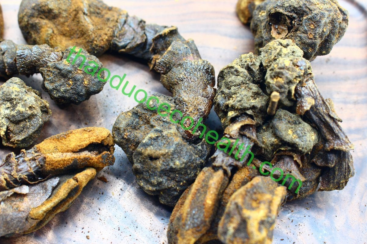 Nấm ngọc cẩu 1kg 16