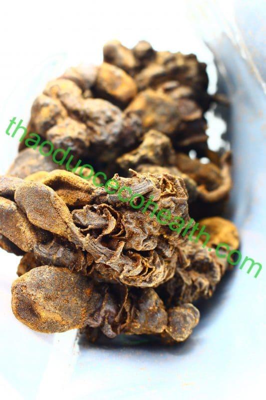 Nấm ngọc cẩu 1kg 17